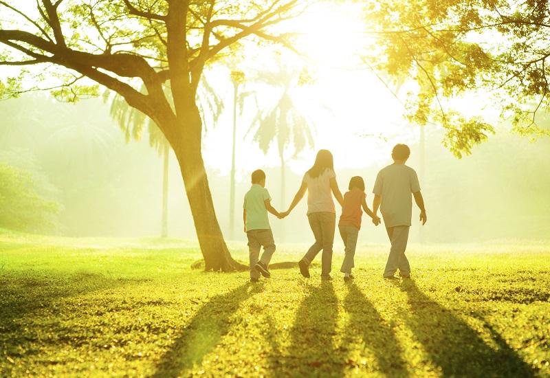 Predict family future